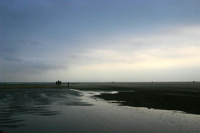 (anne)horizon (Small)
